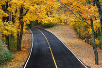 Blacktop Road In Autumn von Paul Lemke