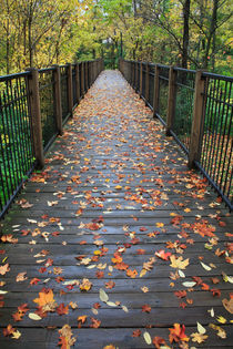 Autumn Foot Bridge by Paul Lemke