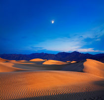 Desert Moonrise by Paul Lemke