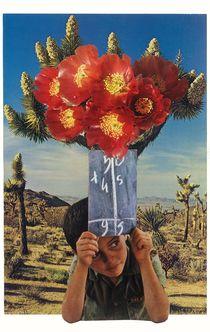 Sonic Bloom by Jesse  Treece