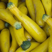 Zucchini von James Menges