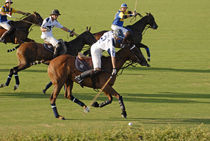 Sotogrande Polo 1 von Simon Littlejohn