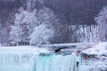 Niagara Winter US Falls & Bridge by Ian C Whitworth
