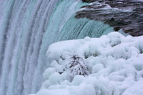 Niagara Falls Winter at the Brink by Ian C Whitworth