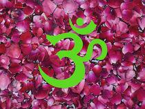 OM - Green on Pink von James Menges