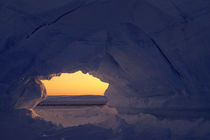 ICEBERG WITH ARCH AND EMPEROR PENGUIN COLONY IN BACKGROUND by Wolfgang Kaehler