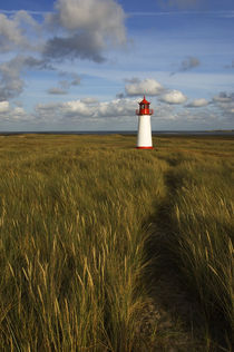 Lighthouse with Dune Grass and Clouds by Wolfgang Kaehler