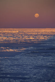 Moon Rising over Pack Ice by Wolfgang Kaehler