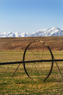 Farming in Bishop, California von Melissa Salter