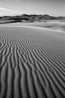 Ripples in the Sand by Wolfgang Kaehler