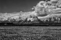 Grand Teton by Wolfgang Kaehler