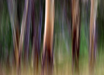 Colours-of-australia-filt