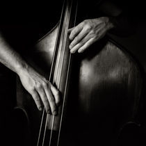 The Bassplayer by Hasse Linden