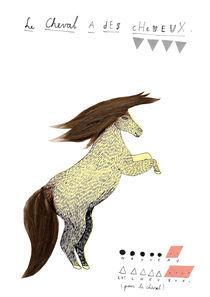 un cheval, des cheveux by Karolien Vanderstappen