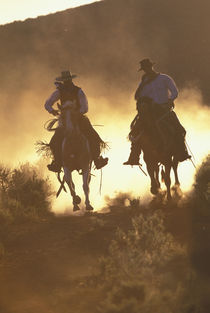 NA, USA, Oregon, Seneca, Ponderosa Ranch Cowboys riding in dust  MR PR by Danita Delimont