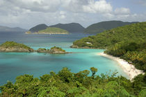 Caribbean, U.S. Virgin Islands, St  John by Danita Delimont