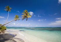 Long Haul Bay, Nevis by Danita Delimont
