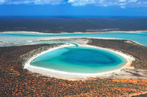 Australia, Western Australia, Shark Bay by Danita Delimont
