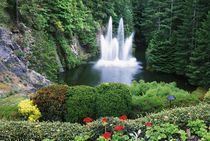 N.A., Canada, British Columbia, Vancouver Island, Saanich, Butchart Gardens by Danita Delimont