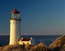 WA, Cape Disappointment State Park, North Head Lighthouse von Danita Delimont