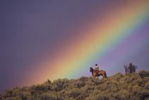 NA, USA, Oregon, Seneca, Ponderosa Ranch Rainbow and cowboy by Danita Delimont