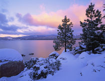 USA, California. A winter day at Lake Tahoe. Credit as by Danita Delimont