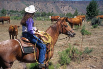 A cowgirl out working the herd on a cattle drive through central Oregon. von Danita Delimont
