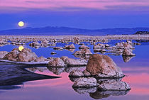 USA, California. Full moon rises at sunset on Mono Lake. Credit as by Danita Delimont