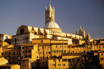 Europe, Italy, Tuscany, Siena. 13th century duomo. Sunset. by Danita Delimont