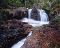 Red rock cascades along Virginia Creek in Glacier National Park in Montana by Danita Delimont