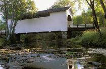 Harris Covered Bridge, in Benson County, Oregon. von Danita Delimont