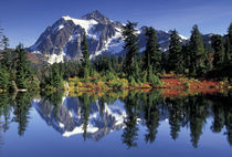 USA, WA, Heather Meadows RA. Mount Shuksan at Picture Lake. by Danita Delimont