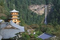 Kumano Nachi Shrine, Katsuura, Wakayama, Japan by Danita Delimont
