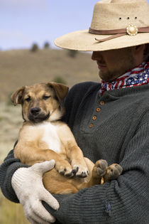 USA, Oregon, Seneca, Ponderosa Ranch. Cowboy holds his puppy. Credit as von Danita Delimont