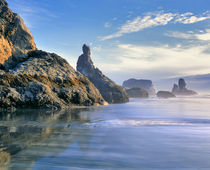 USA, Oregon, Face Rock Wayside by Danita Delimont