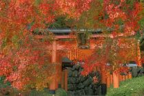 Yoshimine Temple, Nagaoka, Kyoto, Japan by Danita Delimont