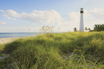 Bill Baggs Cape Florida Lighthouse Bill Baggs Cape Florida State Park von Danita Delimont