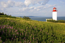 Lighthouse at St. Martins, New Brunswick, Canada by Danita Delimont