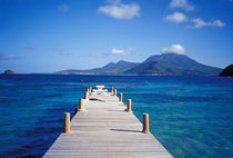 Caribbean, St. Kitts, View from Turtle Bay by Danita Delimont
