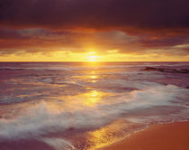 USA, California, San Diego.  Sunset over the Pacific Ocean at Sunset Cliffs von Danita Delimont