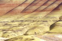USA, Oregon, John Day Fossil Beds NM, Painted Hills Abstract by Danita Delimont
