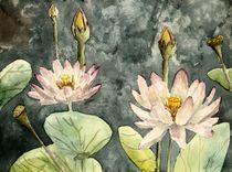 Lotus-flower-large