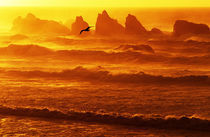 USA, Oregon, Bandon. Sunset over waves and sea stacks. Credit as von Danita Delimont