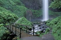 USA, Columbia River Gorge by Danita Delimont