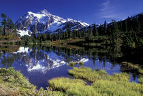 USA, WA, Heather Meadows RA. Mount Shuksan reflected in Picture Lake. von Danita Delimont