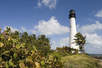 USA-Florida-Miami Area (Key Biscayne): Cape Florida Lighthouse von Danita Delimont