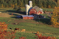 North America, USA, Vermont, Pomfret. Red Barn and fall foliage by Danita Delimont