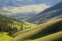 Looking down at the Jocko riover Valley in Montana by Danita Delimont