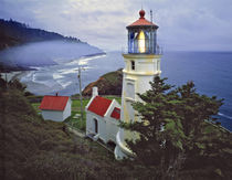 USA, Oregon, Heceta Head by Danita Delimont
