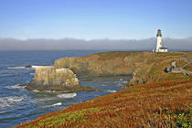 Yaquina Head Lighthouse at Newport Oregon von Danita Delimont